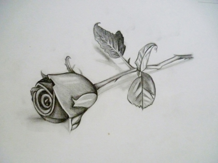 Marvelous 3D Rose Pensil Sketch Step By Step Ideas 3D Flower Drawing At Paintingvalley | Explore Collection Of 3D Picture