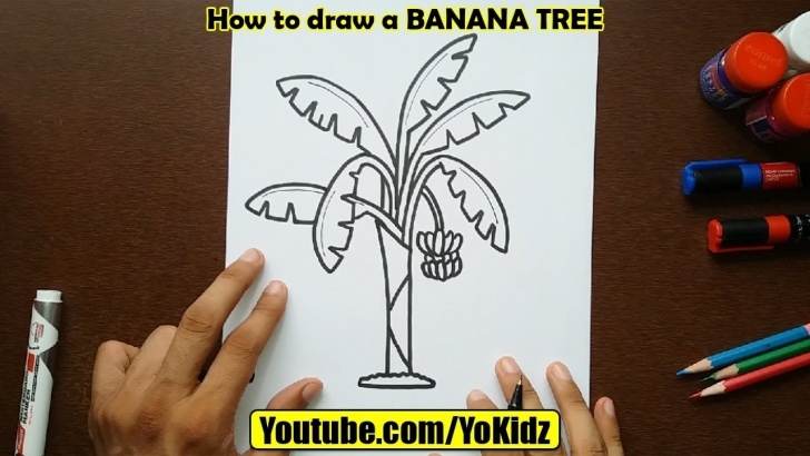 Marvelous Banana Tree Pencil Drawing Techniques for Beginners How To Draw Banana Tree Image