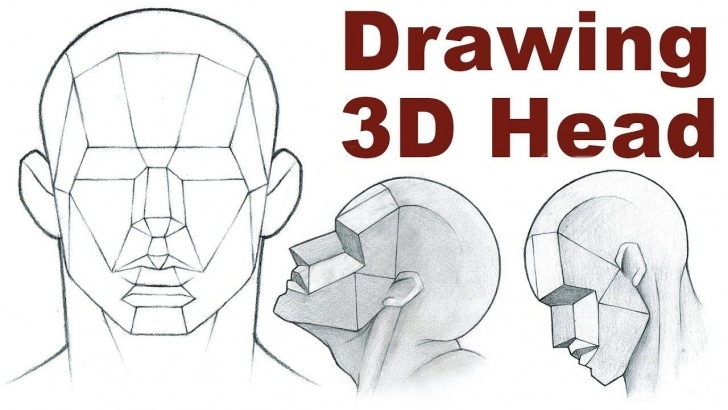 Marvelous Basic Portrait Drawing Courses Portrait Drawing Basics 3/3 - How To Draw A 3D Head | Learn Heads In Pics