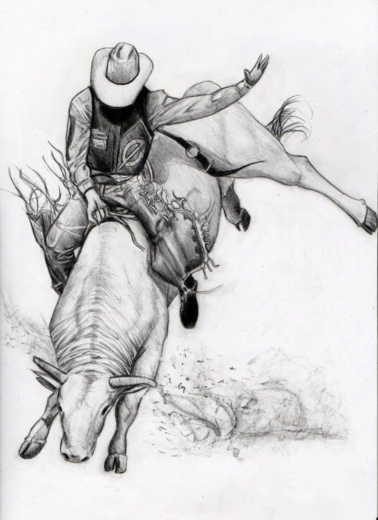 Marvelous Bull Pencil Drawing Tutorials Bull Riding Drawing At Paintingvalley | Explore Collection Of Image