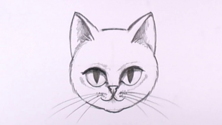 Marvelous Easy Cat Pencil Drawings Lessons How To Draw A Cat Face In Pencil - Drawing Lesson - Mat Image