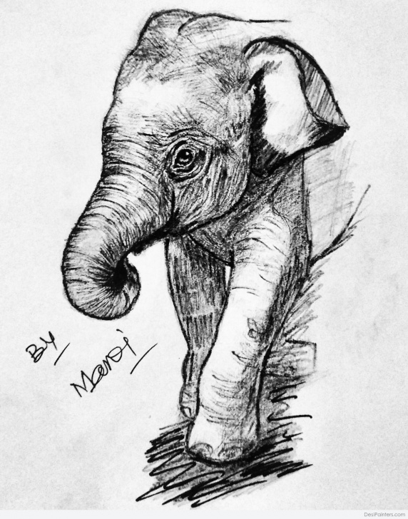 Marvelous Elephant Pencil Sketch Tutorial Great Pencil Sketch Of Elephant | Desipainters Image