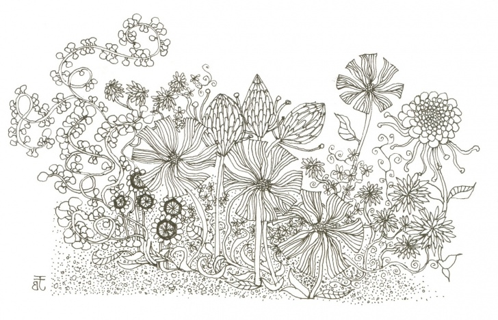 Marvelous Flower Garden Drawing Pencil Techniques Pencil Drawing Flower Garden And Drawing Flower Garden Flower Garden Photo