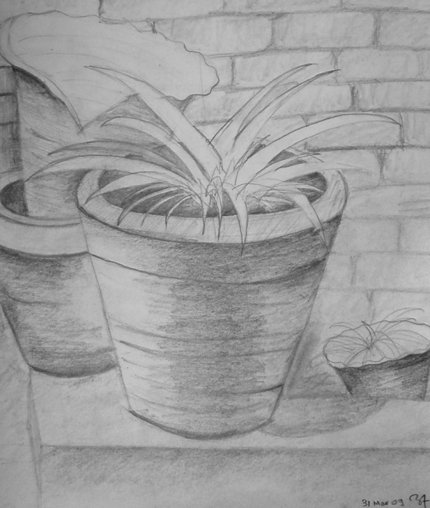 Marvelous Flower Pot Pencil Sketch Free Flower Pot | Pencil Sketch | Sketches, Drawings, Pencil Photos