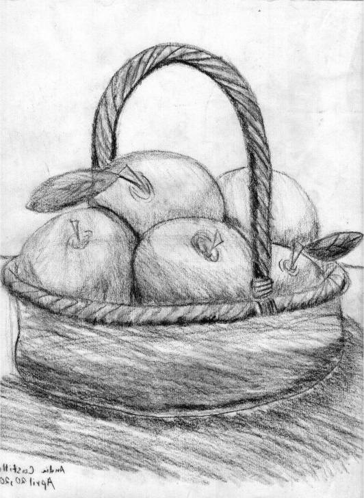 Marvelous Fruit Basket Pencil Shading Free Pencil Sketch Of Fruits At Paintingvalley | Explore Collection Pics