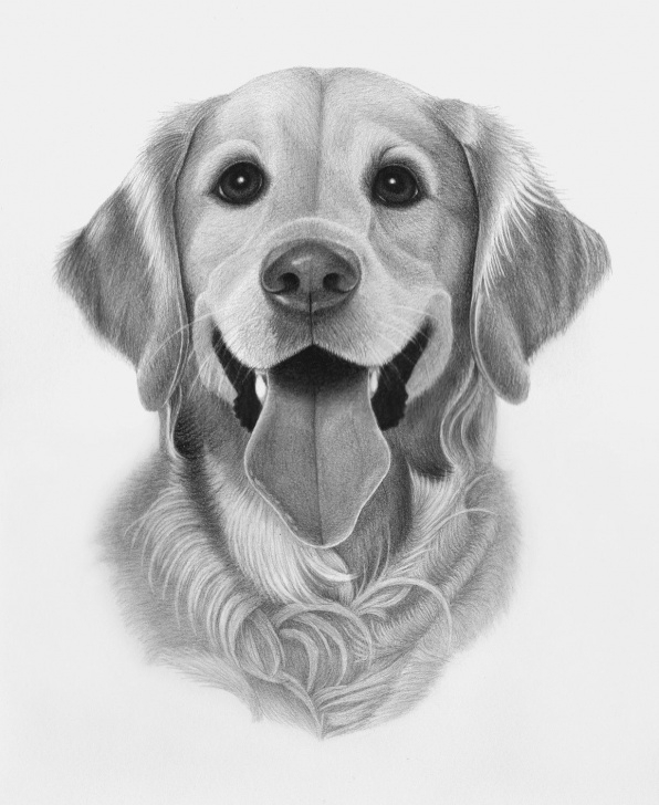 Marvelous Hard Pencil Drawings Simple Pin By April Dikty ( Ordoyne) On Dogs | Hard Drawings, Pencil Images