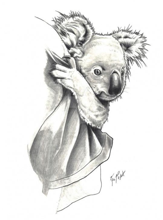 Marvelous Koala Pencil Drawing Techniques for Beginners Koala By Freakcastle On Deviantart | Art In 2019 | Koala Tattoo Pics