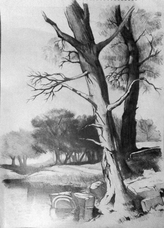 Marvelous Landscape Pencil Drawing Lessons Pencil Sketch Scenery At Paintingvalley | Explore Collection Of Photo