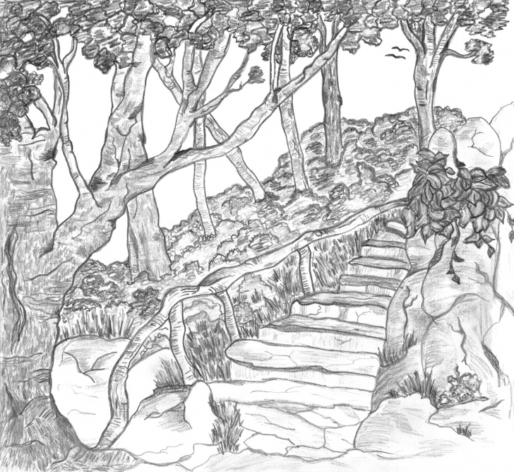Marvelous Outdoor Pencil Sketches Step by Step This Illustration Contest Is Now Closed. 2 Creatives Participated Picture