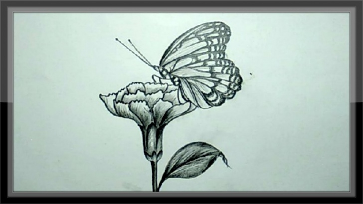Marvelous Pencil Drawings Of Flowers And Butterflies Step By Step Techniques for Beginners Easy Pencil Drawing Tutorial - How To Draw A Butterfly Image