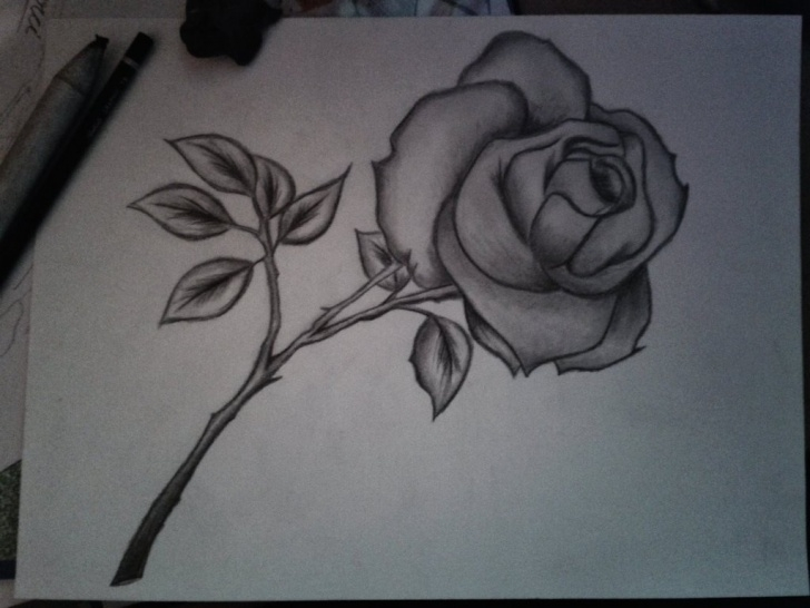 Marvelous Pencil Sketch Drawing Of Flowers Easy Pencil Sketch Drawing Of Flowers And Pencil Drawing Flower Simple Photos