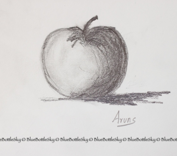Marvelous Pencil Sketch Of Apple Easy Apple Pencil Sketch At Paintingvalley | Explore Collection Of Picture