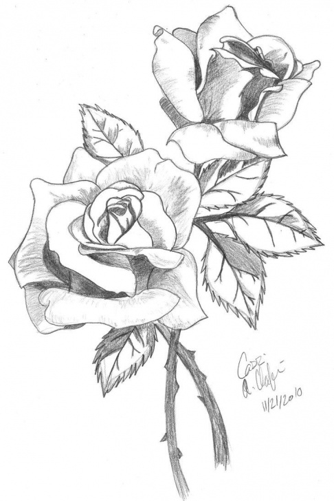 Marvelous Rose Pencil Art Ideas Rose Drawings In Pencil | Roses-Shaded By Ashton18 | Tatoo In 2019 Photo