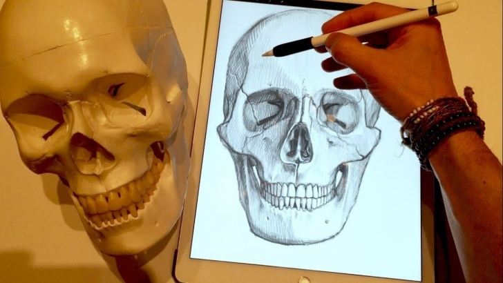 Most Inspiring Apple Pencil Artwork Free How To Draw A Skull, On Ipad Pro With Apple Pencil Photo