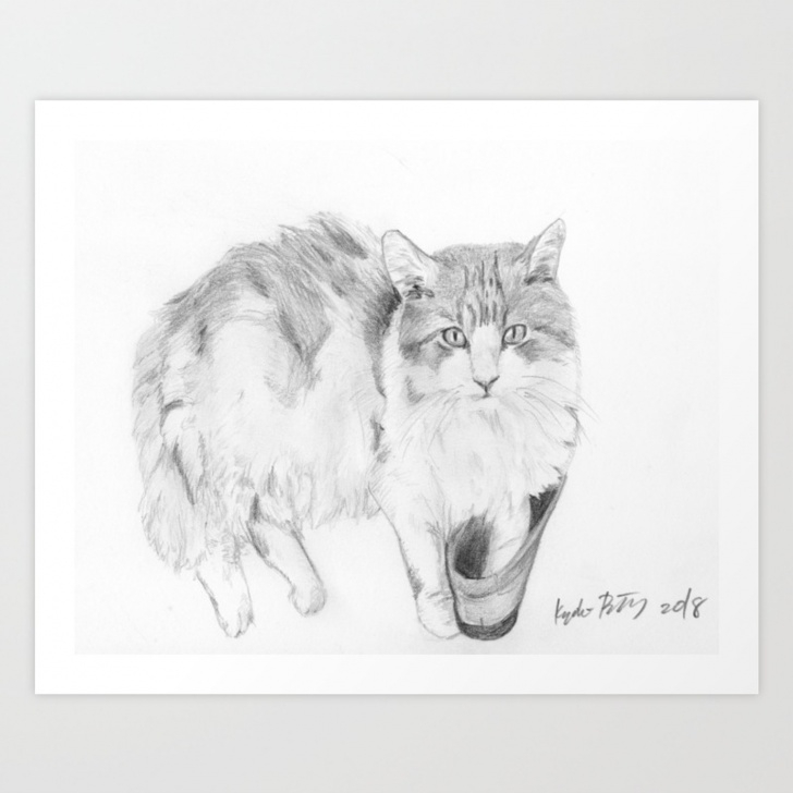 Most Inspiring Cat Pencil Sketch Courses Cat Realistic Pencil Sketch Drawing Art Print Pic