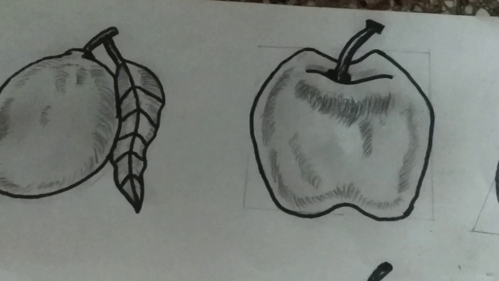 Most Inspiring Fruits Pencil Shading Easy Pencil Shading Of Fruits Picture