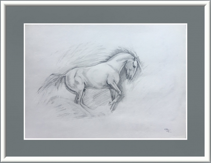 Most Inspiring Horse Pencil Drawing Techniques for Beginners Original Pencil Sketch Horse Drawing Pencil Drawing Gift For Horse Lover  Horse Lover Gift Horse Gifts For Girl Equestrian Gifts Equine Ranch Pictures