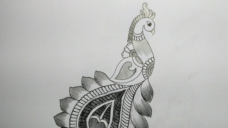 Most Inspiring Peacock Pencil Shading Techniques for Beginners How To Draw Peacock With Beautiful Feather Design | Pencil Shading Photo