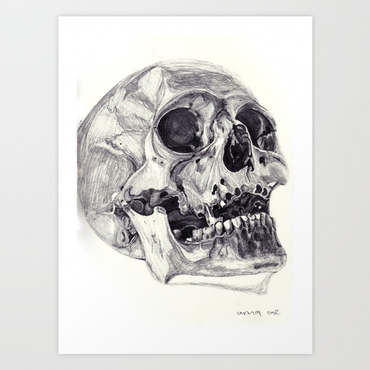 Most Inspiring Skull Pencil Drawings Courses Skull Pencil Drawing Art Print Photo