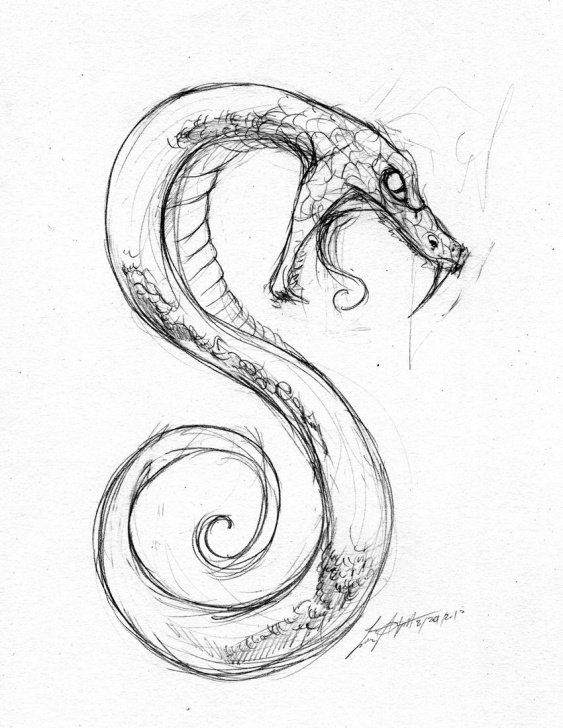 Most Inspiring Snake Drawings In Pencil Courses Snake Sketch … | References In 2019… Pictures