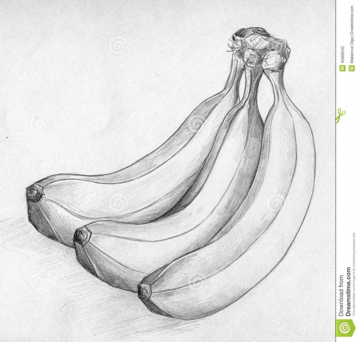 Nice Banana Pencil Sketch Step by Step Banana Sketch Drawing At Paintingvalley | Explore Collection Of Photo