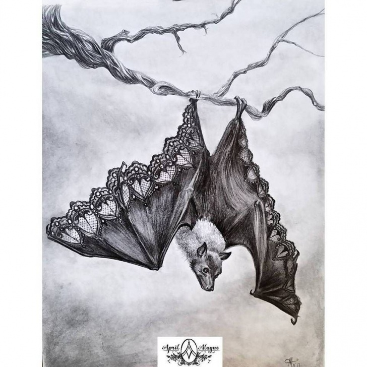 Nice Bat Pencil Drawing Simple Bat Illustration- Beautifully Dysfunctional- Leather And Lace- Bat Images