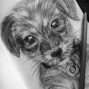 Nice Dog Pencil Art Simple Puppy #drawing #pencil #cute #dog Pencil Drawing Of A Puppy | Art Image