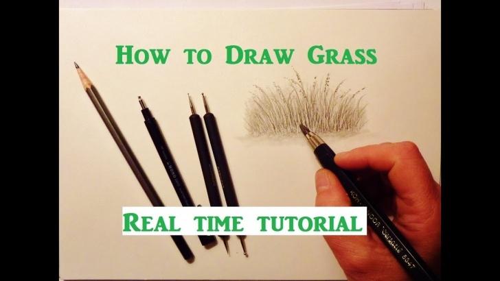Nice Drawing Grass With Pencil Courses How To Draw Grass, Pencil Drawing Tutorial, Graphite Pencil Drawing Tips Image
