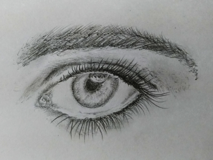 Nice Eye Pencil Art Techniques for Beginners Realistic Eye Art By Mlspcart On Dribbble Pictures