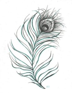 Nice Peacock Feather Pencil Drawing Techniques for Beginners Images For > Pencil Drawing Pictures Of Peacock | Ink | Peacock Photo