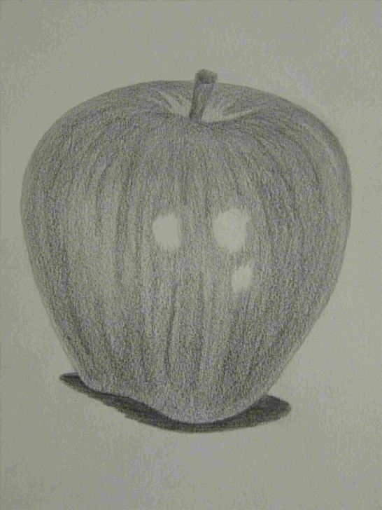 Nice Pencil Sketches Of Fruits And Vegetables Free Pencil Sketches Of Vegetables Image