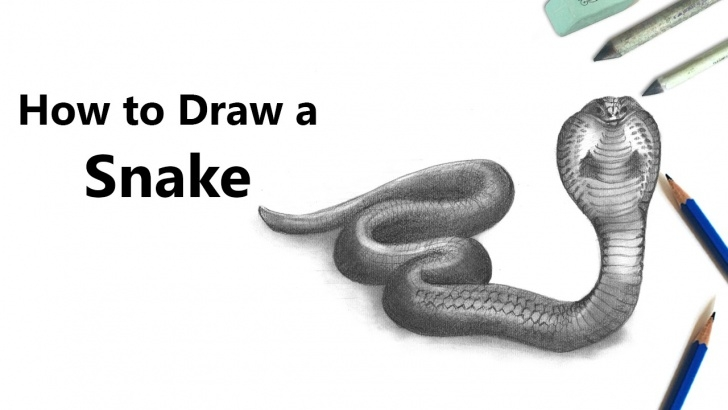 Nice Snake Drawings In Pencil Tutorials How To Draw A Snake With Pencil [Time Lapse] Photo