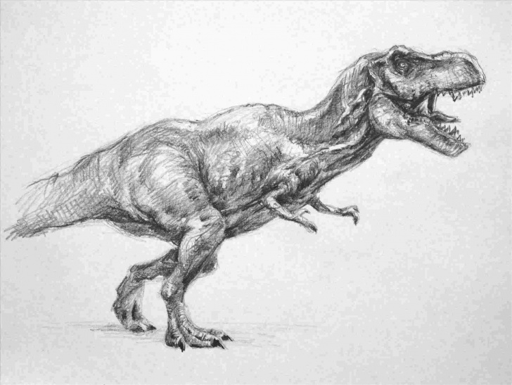 Nice T Rex Pencil Drawing Techniques for Beginners Dinosaur Pencil Drawing At Paintingvalley | Explore Collection Image