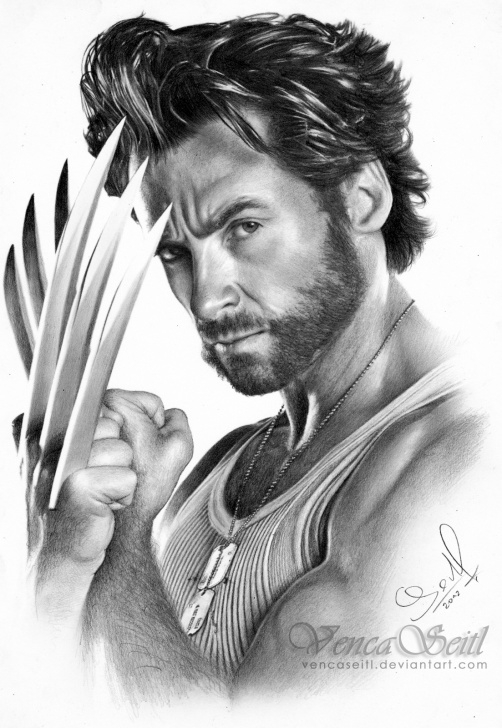 Nice Wolverine Pencil Drawing Techniques Pencil Drawing Of Wolverine At Paintingvalley | Explore Pics