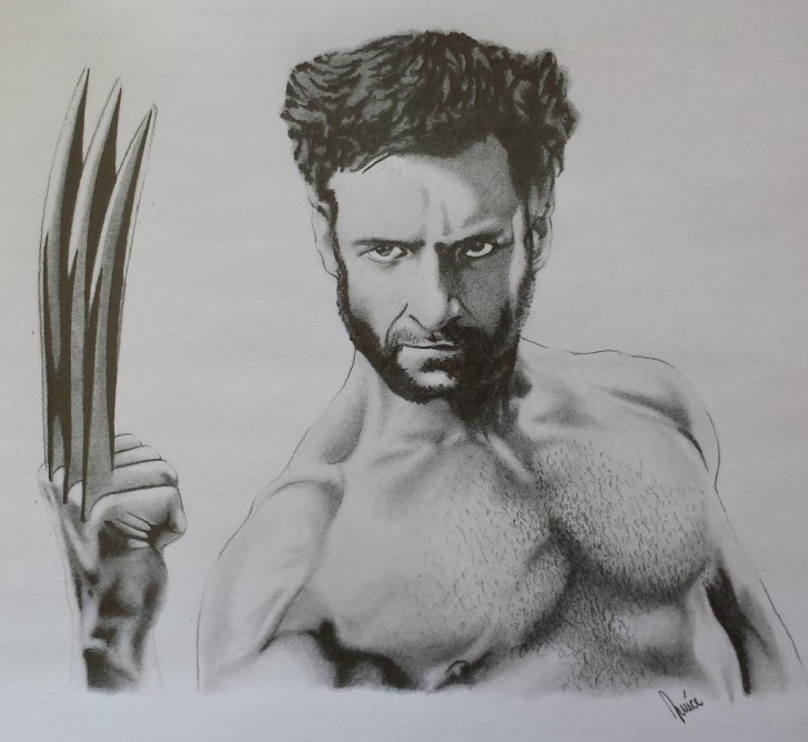 Nice Wolverine Pencil Drawing Tutorial Wolverine Pencil Sketch At Paintingvalley | Explore Collection Photos