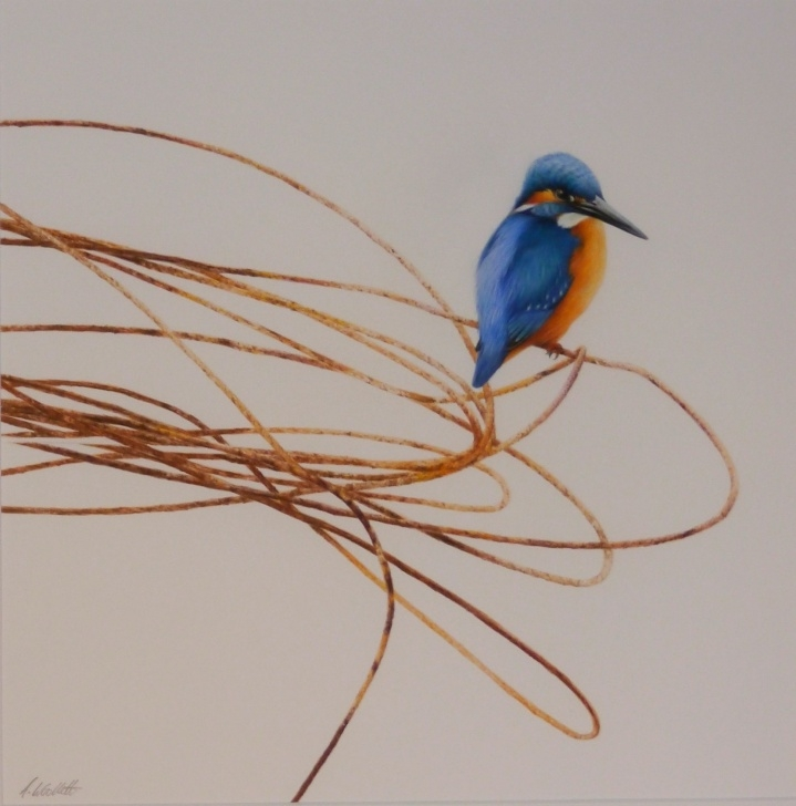 Outstanding Alan Woollett Art Easy Kingfisher By Alan Woollett #alanwoollett #contemporaryart Pictures