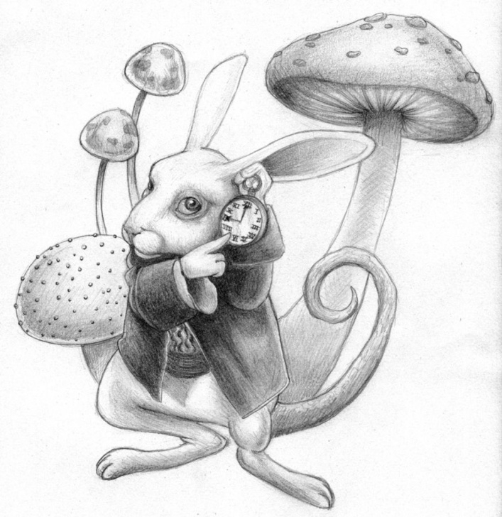 Outstanding Alice In Wonderland Pencil Drawings Easy I Do Believe This Is A Pencil Sketch From Tim Burtons Remake Of Image