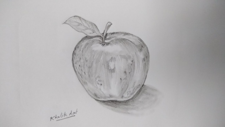 Apple Still Life Drawing
