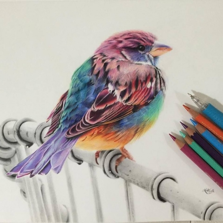 Outstanding Beautiful Colored Pencil Drawings for Beginners 50 Beautiful Color Pencil Drawings From Top Artists Around The World Pics