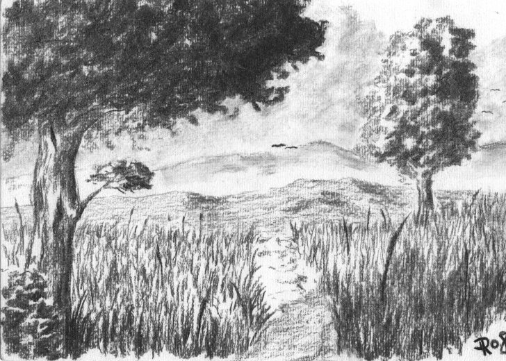 Outstanding Charcoal Landscape Sketches Lessons Pin By Eva Lau On Art In 2019 | Drawings, Charcoal Art, Art Drawings Pictures