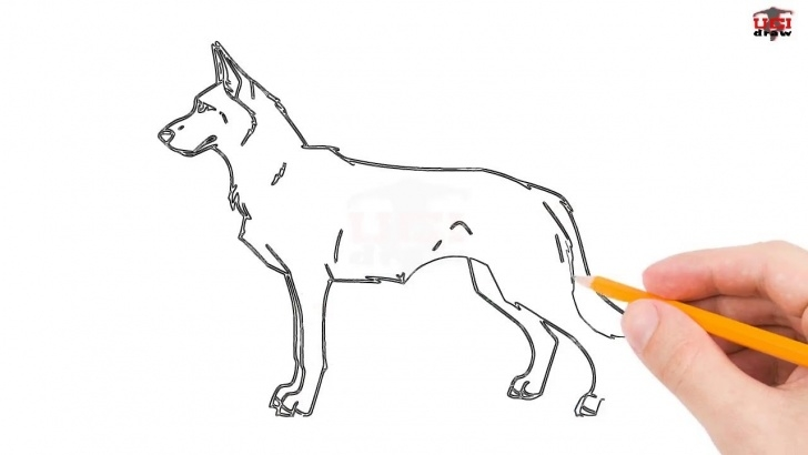 Outstanding Dog Simple Pencil Drawing Free How To Draw A German Shepherd Step By Step Easy For Beginners – Simple Dog  Drawing Tutorial Photo
