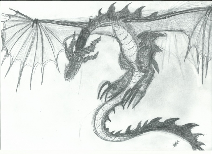 Outstanding Dragon Pencil Art Courses Dragon Pencil Art | School Of Dragons | How To Train Your Dragon Games Images