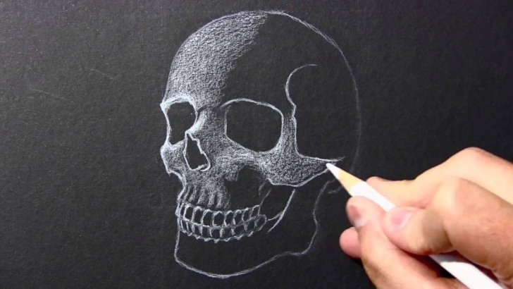 Outstanding Drawing On Black Paper With White Pencil Easy Drawing Time Lapse: Skull [White Pencil/black Paper] Picture