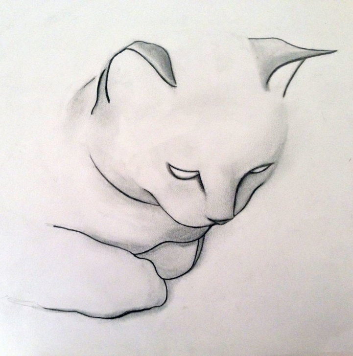 Outstanding Easy Cat Pencil Drawings Simple Cat Pencil Sketch Black Drawing Pic Cartoon Free Simple — Barriotaqueria Images