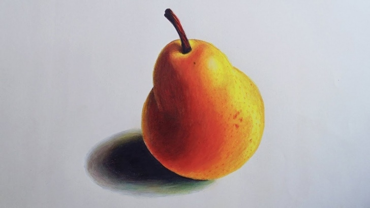 Outstanding Easy Prismacolor Drawings Lessons Pear Speed Drawing (Prismacolor Pencils) Photos