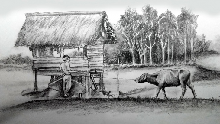 Outstanding Farmer Pencil Drawing Lessons Farmer And His Life Pencil Sketch / Banglar Art Pictures