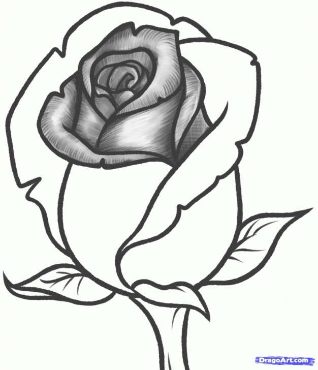Outstanding Pencil Drawings Of Roses And Hearts Easy Pencil Drawings Of Hearts And Roses | Free Download Best Pencil Images
