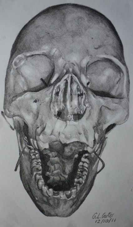 Outstanding Tonal Pencil Drawing Courses Skull - A4 Tonal Pencil Drawing By Glc12 On Deviantart Pics