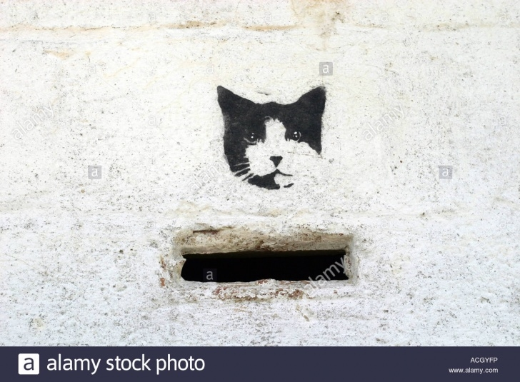 Cat Graffiti Stencil
