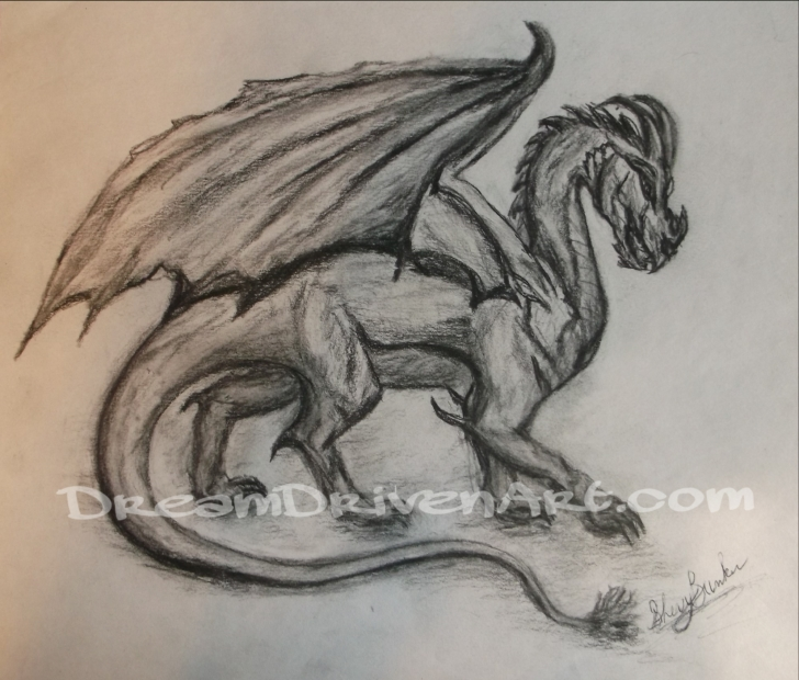 Popular Dragon Pencil Art Lessons Dragon Pencil Sketch And Charcoal Dragon Drawing - Dream Driven Art Picture
